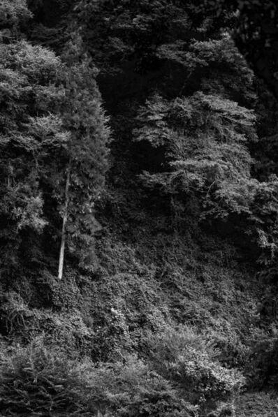 Thomas Maisonnasse, 'Tout ce qui sous le voit au soleil (Oyamamachi Nishioyama 2)', 2016