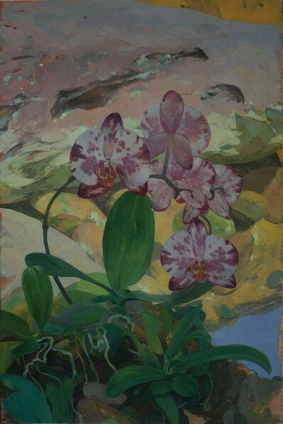 Benjamin J. Shamback, 'Orchids in Rocky Landscape', 2018