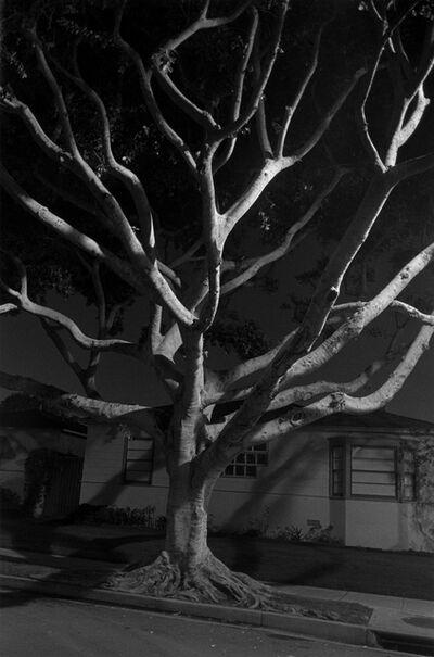 Henry Wessel, 'Night Walk No. 55', 1998