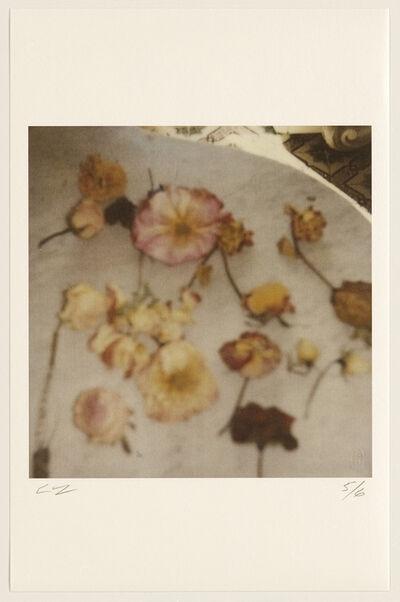 Cy Twombly, 'Light Flowers V (Gaeta)', 2008