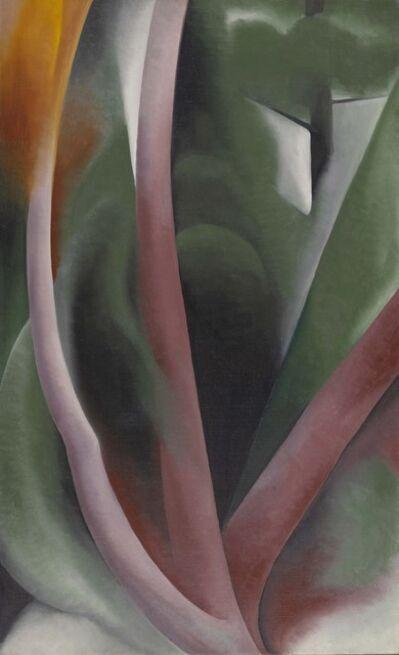 Georgia O'Keeffe, 'Birch and Pine Trees - Pink', 1925
