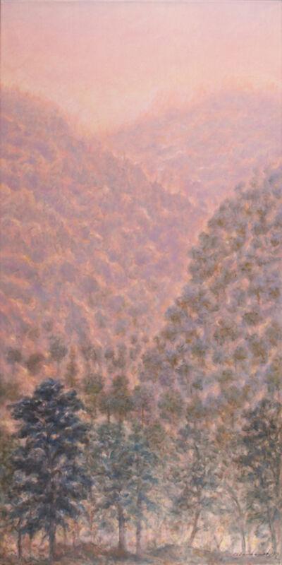 Rodolfo Abularach, 'Montes y Llamas', 1999