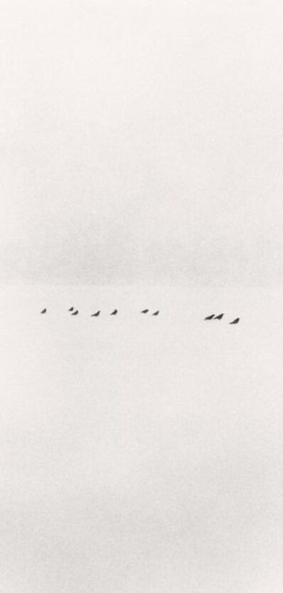 Michael Kenna, 'Ten Birds in a Snowstorm, Wakoto, Japan', 2002