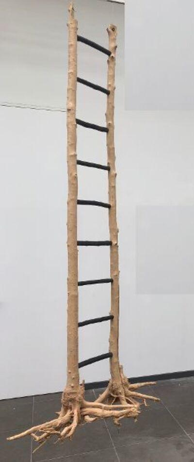 David Décamp, 'L'échelle de Jacob', 2014
