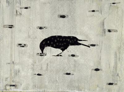 Crow Drinking