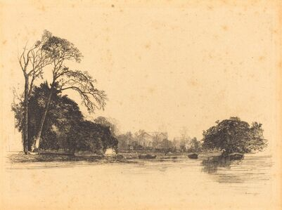 Banks of the Tamise