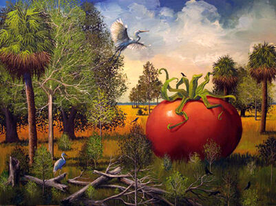 Huge Tomato with Herons