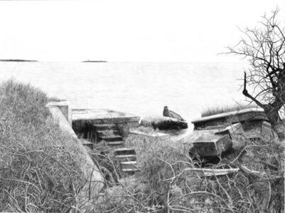 Plum Island - Forbidden Islands Series