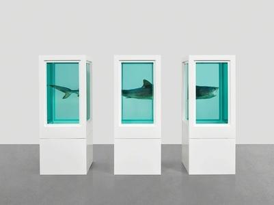 Damien Hirst: Visual Candy and Natural History