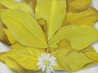 Yellow Hickory Leaves with Daisy