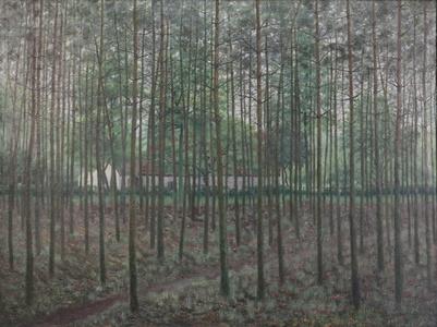Hoeve achter sparrenbos