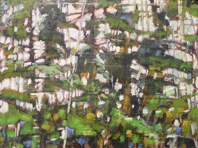 Forest Blur Study