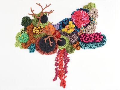 Coral Atlas Stratus