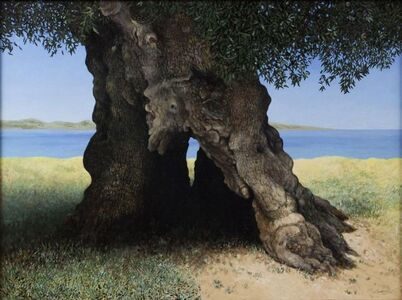 Olive Tree and It's Sea