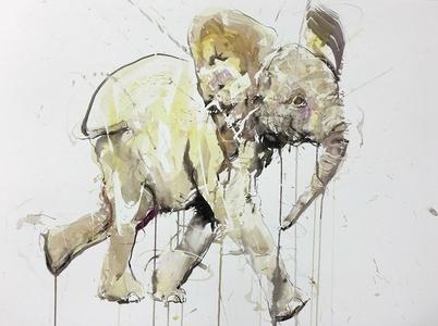 Young Elephant XIII