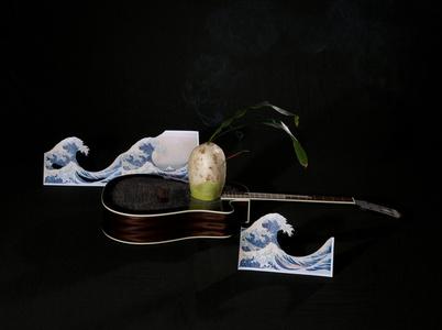 Guitar and Radish