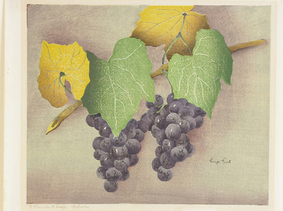 2 Bunches of Grapes