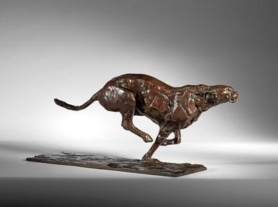 Cheetah Pursuit