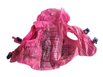 Pink Floatie (crime)