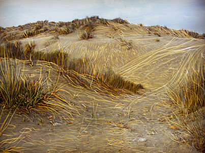 Holon Dunes