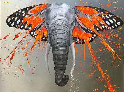 An Elephant Named Ivory