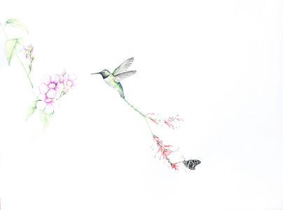 Bird of Paradise #11