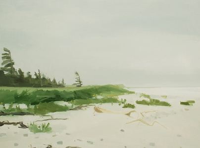 Tree & Beach