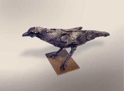 Jupiter Blackbird