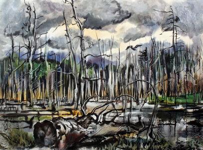 Burnt Forrest Swamp