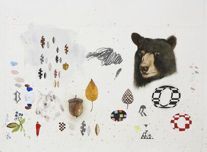 Chaos Bear