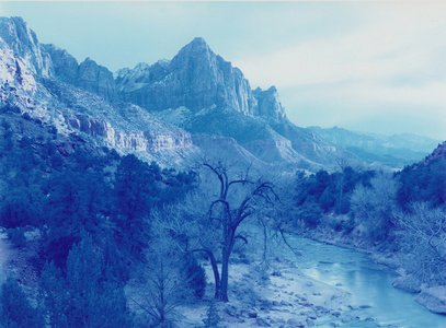 Winter Storm, Zion Canyon, Utah