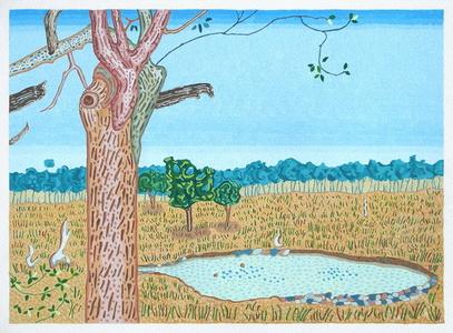 Tree Trunk and Waterhole - Zimbabwe