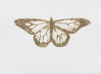 Monarch Butterfly Danaus plexippus (Coney Island, Brooklyn)
