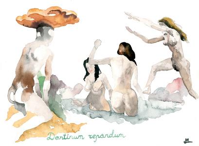Mushrooms-voyeurs