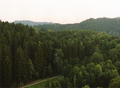 Haslach, Sommer 2012
