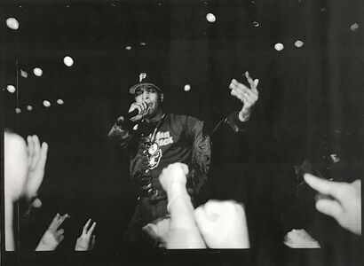 Public Enemy ( Live at The Palace, Hollywood, 1990)