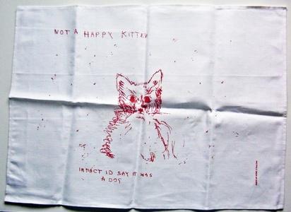 NOT A HAPPY KITTEN