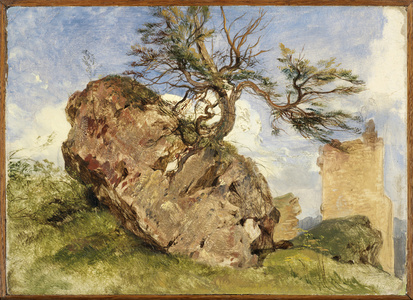 Study of a Rock and Tree