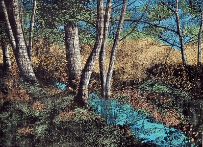 Landscape Series - VII