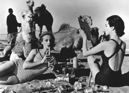 Tatiana + Marie Rose + Camels, Picnic, Morocco