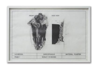 Untitled (Natural History 5)