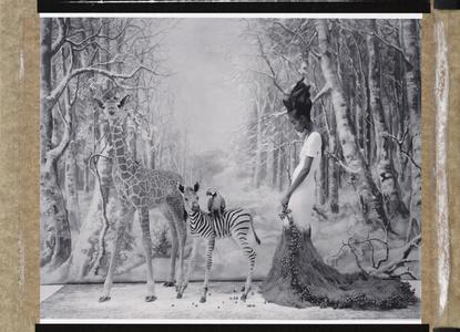 L'Arch de Noé - An African Winter, Cathleen Naundorf, Paris