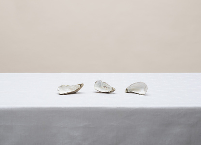"Untitled (#14-5 from the series ""Other Still Lifes"")"