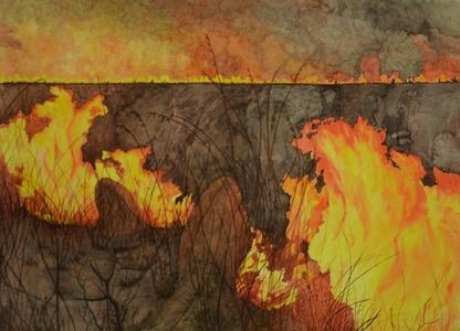 Cerrado em chamas