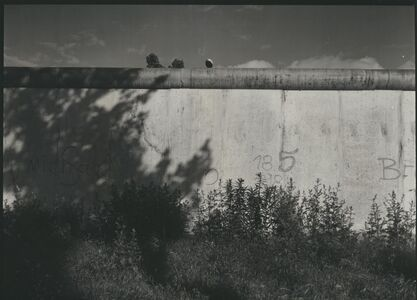 Die Vermessene Mauer/ The Measured Wall 2