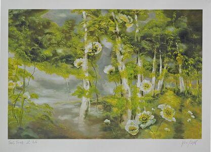 Pavots forêt 2
