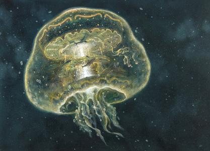 Drifting Series: Life Space Station – Aquarium