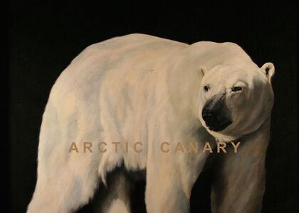Arctic Canary