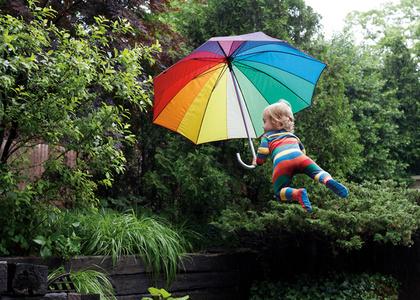 Rainy Day Flight