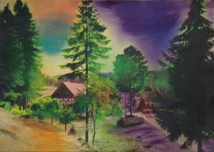 Schlesisches Himmelreich: Waldlichtung